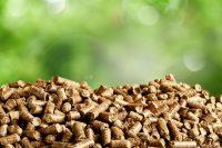 Energia da biomassa quali tipi usare