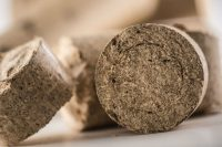 5 cose che non sai sugli impianti a biomassa