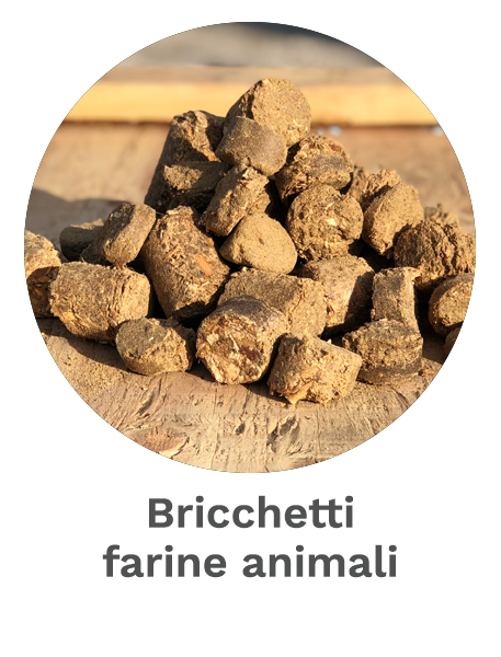 Bricchetti farine animali